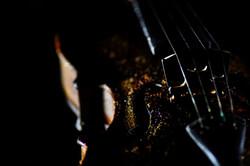 Richard Stanton's forgotten violin