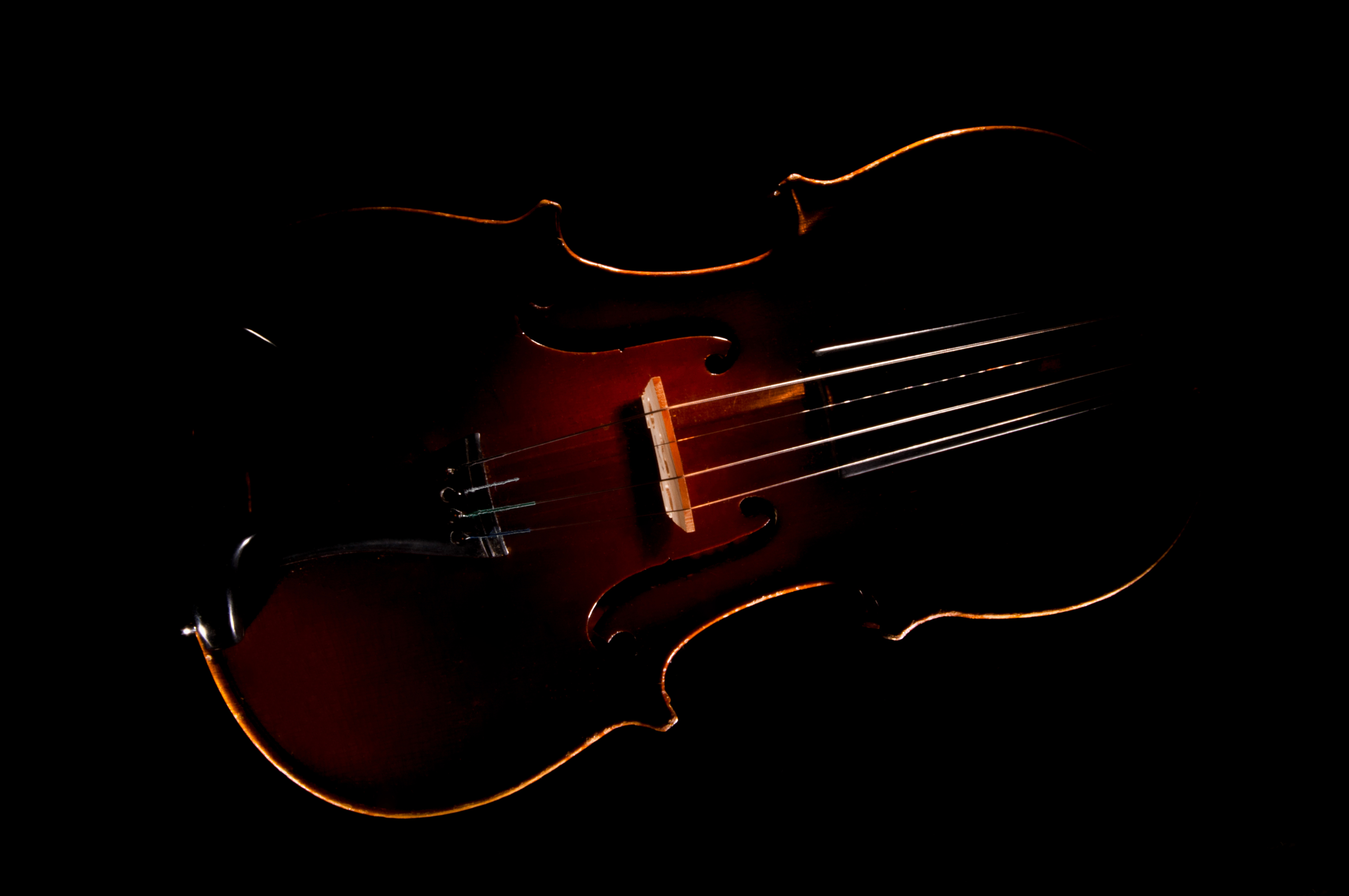Violin in the Void