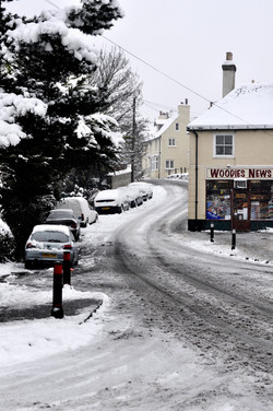 Woodys in the snow