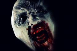 Vampyre Feed bb