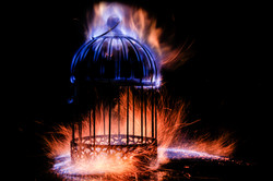 Soul Cage Forging The Cage