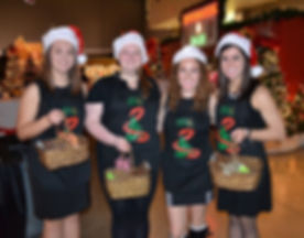 festival of trees volunteers