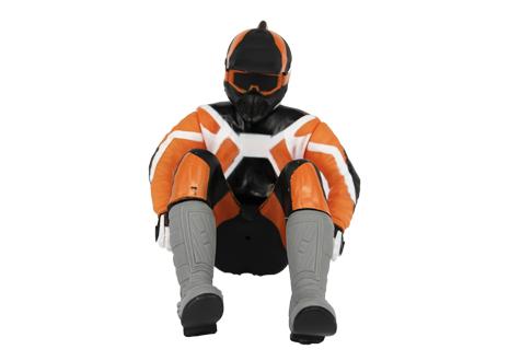 AR Racing driver doll