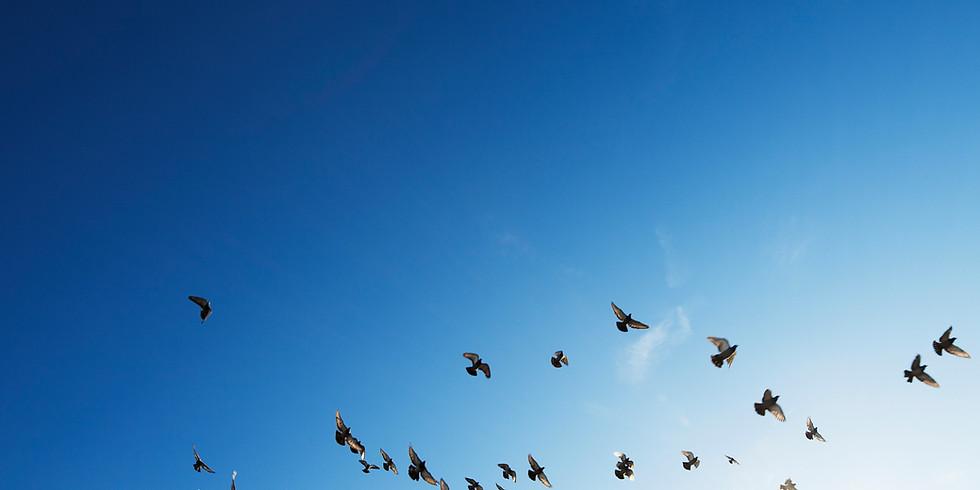 [부산] UN 세계평화의 날,  세계평화를 위한 명상
