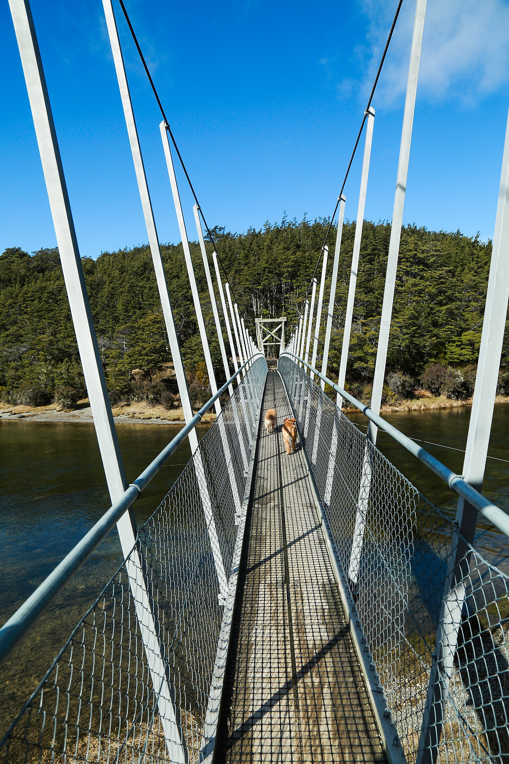 Saaschi's first time on a swing bridge