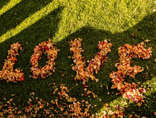 Autumn Wedding in Wanaka