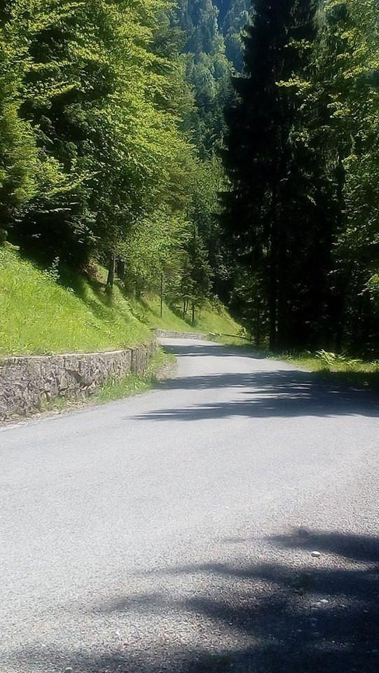 Route du Haut-Jura