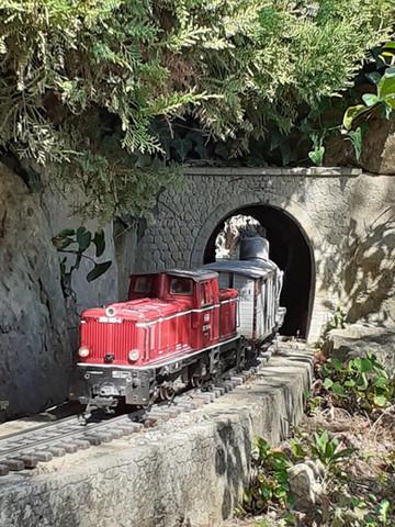 Train ardéchois