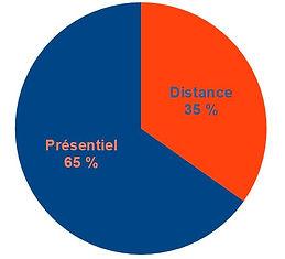 Jury-distance-presentiel.JPG
