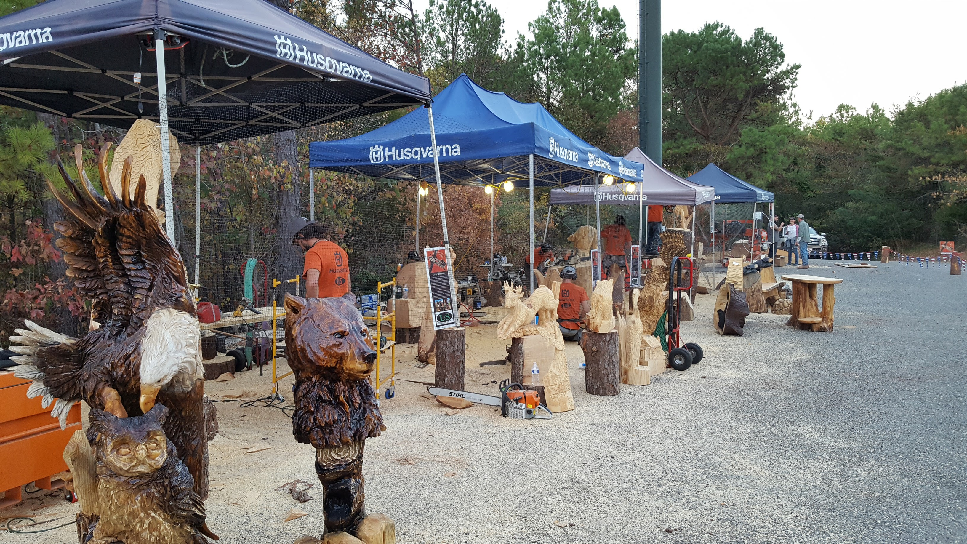 Chainsaw Carving Event!