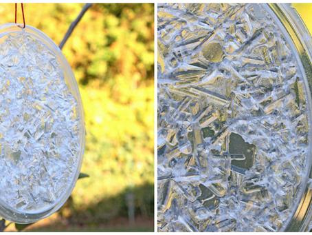 Grow Crystal Sun Catchers!