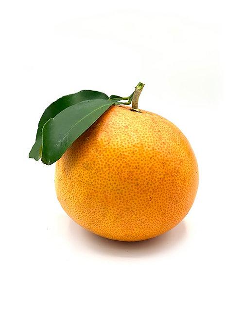 Grapefruit - Kukuipahu Ranch (1 Fruit)
