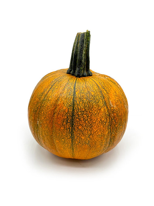 Cooking Pumpkin - Rincon Family Farms (4-5 Pounds)