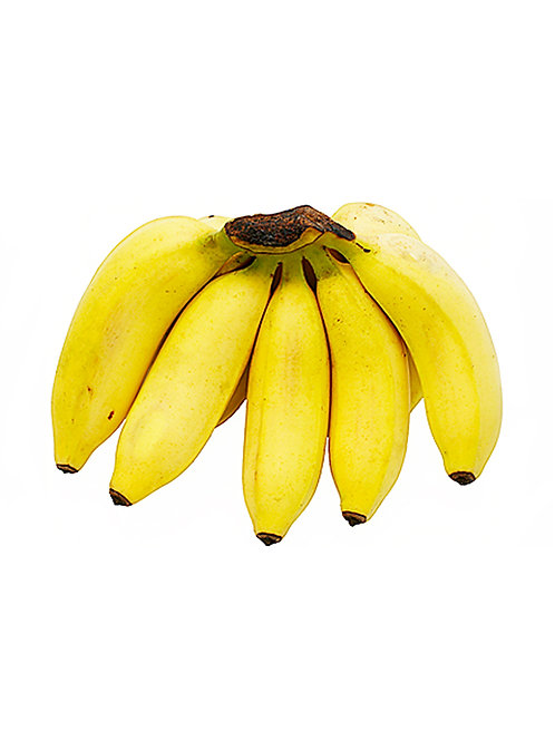 Apple Bananas - Juan's Banana Farm (2 Pounds)