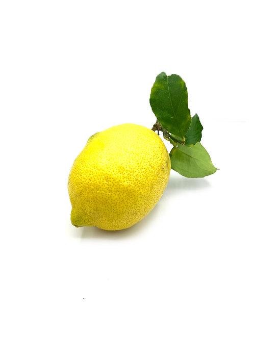 Meyer Lemon - Kukuipahu Ranch (2 Pieces)
