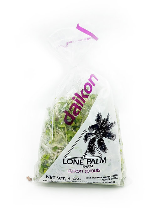 Daikon Spouts - Lone Palm Farm (4 oz)