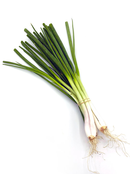 Akakai Green Onion - Yamamoto Farms (1 Bunch)