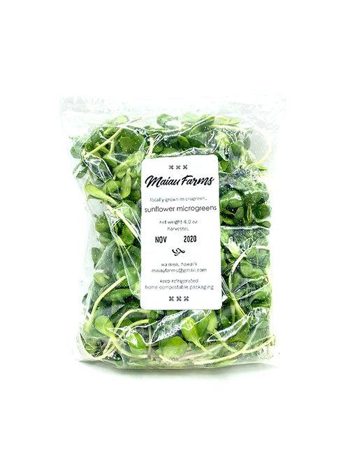 Sunflower Microgreens - Maiau Farms (3 or 6 oz)