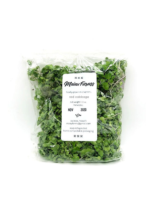 Red Cabbage Microgreens - Maiau Farms (1.5 Ounce)