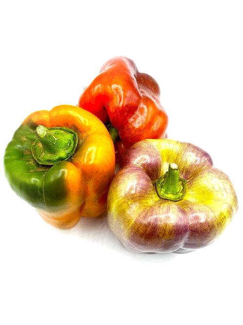 Bell Pepper Hybrid Mix - HL Farm (1 lb)