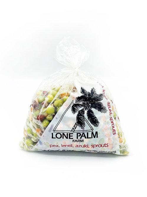 Pea, Lentil, Azuki, Sprouts Blend - Lone Palm Farm (8 oz)