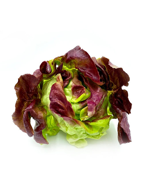 Red Butter Lettuce - JA Farms (8oz)