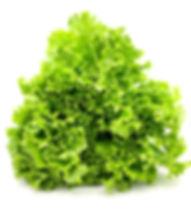 LeafyGreens-2.jpg