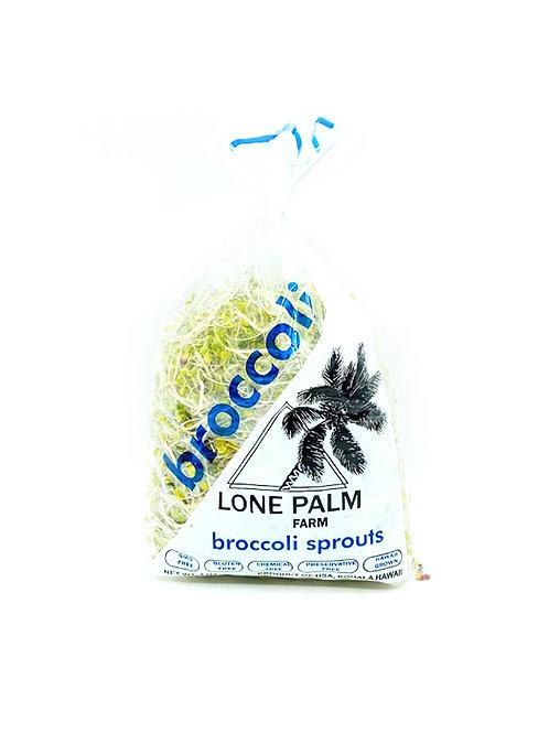 Broccoli Spouts - Lone Palm Farm (4 oz)