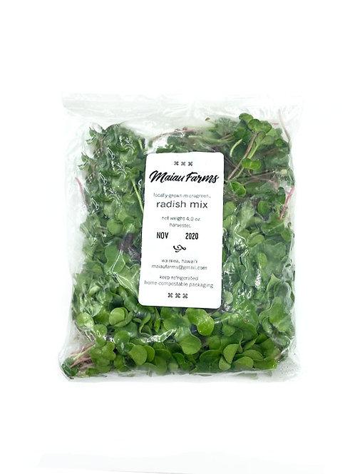 Radish Mix Microgreens - Maiau Farms (2 or 4 oz)