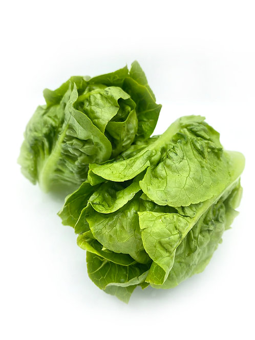 Baby Romaine - JA Farms (10 oz)