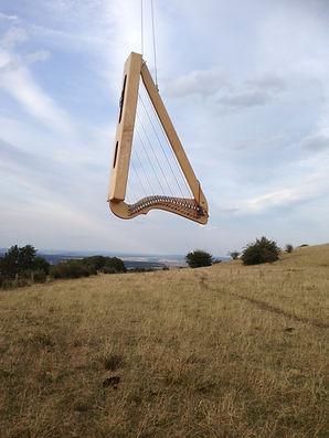 Harp Nomad.JPG