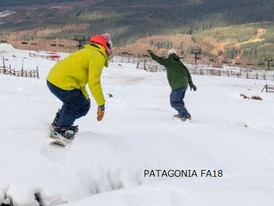 【PATAGONIA パタゴニア/ FA18】情報