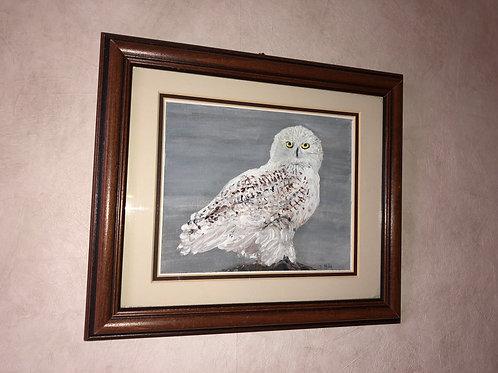 Canadian Snow Owl