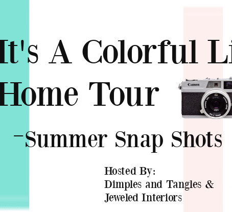 It's A Colorful Life - Snapshots of Summer Tour