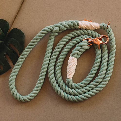 Mint to Be - Dog Rope Leash