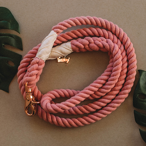 Cotton Candy - Dog Rope Leash