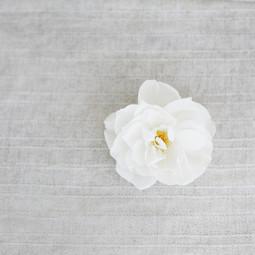 Blooming Wed Wedding planner湾区华人婚礼策划 旧金山