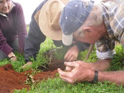 Inspecting soil