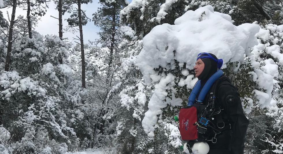 Le Triton sous la neige provençale