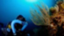 Le ccr Triton en plongée sous-marine