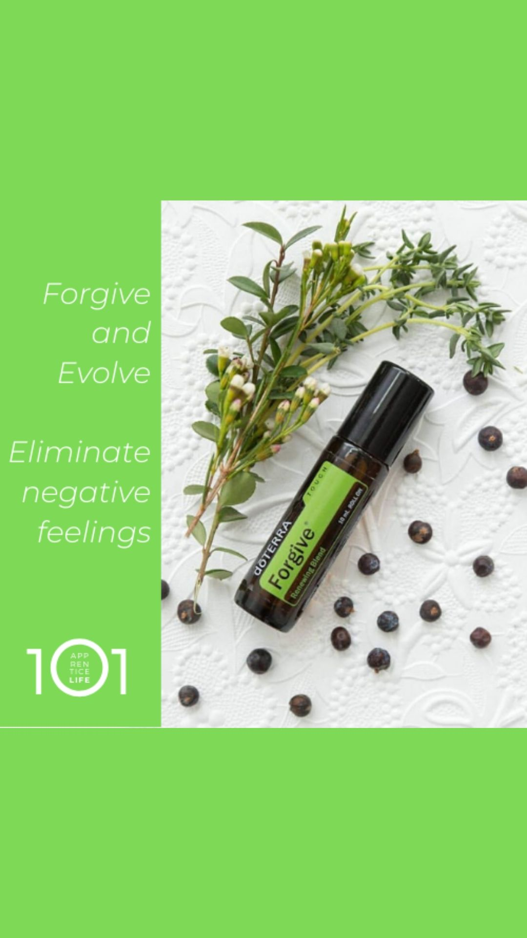 FORGIVE BLEND ESSENTIAL OILS Helping you to counteract emotions of anger and guilt