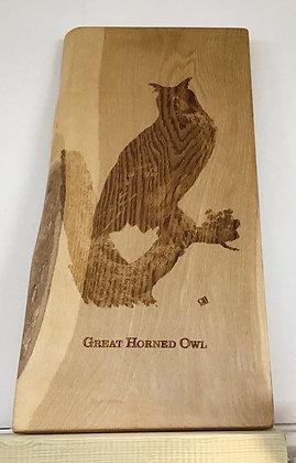 Great Horned Owl on Oak
