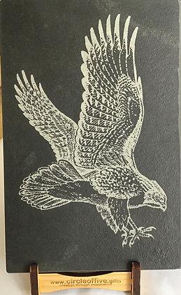 Eagle on Slate