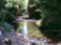 Rivière en Limousin