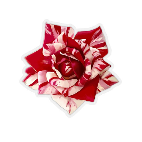 Red and White Rose  Parade Kiss-Cut Stickers