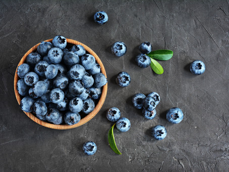 9 Summer fruits which are healthy for our dogs