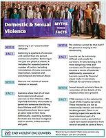 DV-SA Fact Flyer Icon.JPG