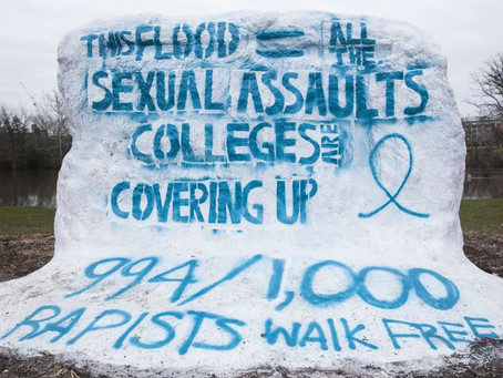 Local groups a resource for survivors of sexual, domestic violence