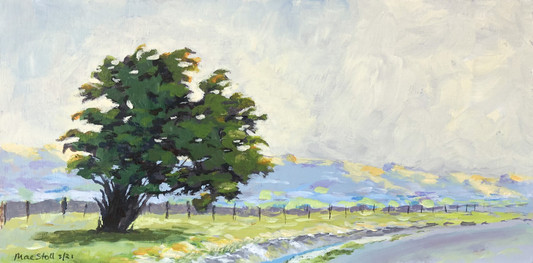 Lone Tree on Country Road (in private collection)