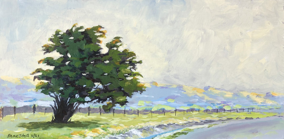 Lone Tree on Country Road - In private collection